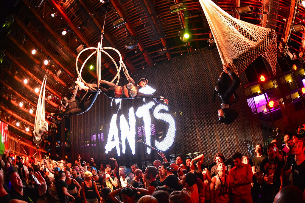 ANTS is ready for the Ibiza summer season! -Clubbingtv.com