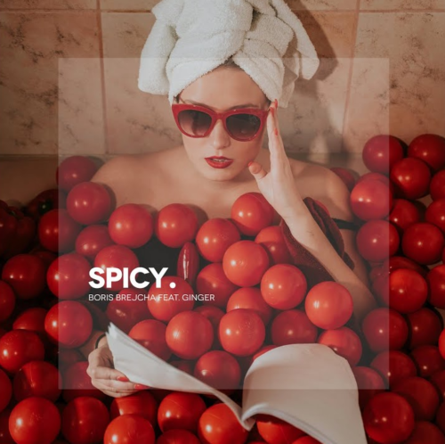 The new single 'Spicy' by Boris Brejcha and Ginger is out!