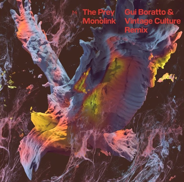 Gui Boratto and Vintage Culture throw their own spin on 'The Prey'!